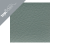 ER   6f / ER 6n , 2009 - 2011 2011 petrole for FLAT SAGE GREEN METALLIC (G)