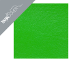 ER   6f / ER 6n , 2009 - 2011 2009 green for LIME GREEN (D)