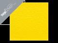 GT 125 / GT 250 / GT 650 / GTR 650 , 2005 - 2012 2005 / 2006 yellow (B)