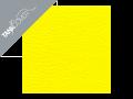 RAPTOR  650 , 2001 - 2009 2001 - 2005 buttercup yellow (D)