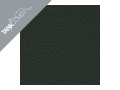 MONSTER 696 / 796 / 1100 (S) , 2008 - 2015 2010 / 2014 matt black (K)